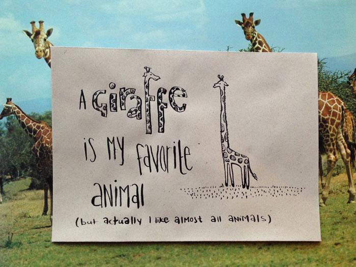 09 giraffe